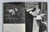 カレル・チャペックの写真絵本02.jpg